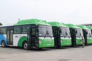 Hà Nội: Thí điểm xe bus sử dụng nhiên liệu sạch