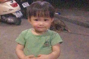Cho rằng con gái 2 tuổi bị bắt cóc, mẹ trẻ cầu cứu khắp nơi