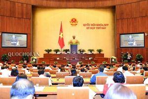 Công bố trình tự các bước bầu Chủ tịch Nước tại Kỳ họp thứ 6, Quốc hội khóa XIV