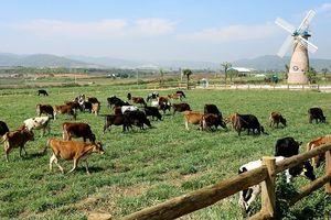 F&N Dairy lại đăng ký mua hơn 17,4 triệu cp Vinamilk