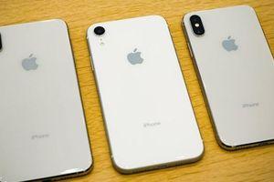 Chênh nhau 7 triệu đồng, người dùng nên chọn iPhone XR hay XS?