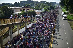 Không chặn được người di cư, Guatemala, Honduras và El Salvador bị Tổng thống Mỹ cắt giảm viện trợ