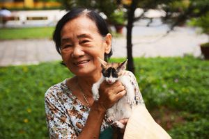 Bà già 'đệ nhị' nuôi hàng trăm con mèo hoang khiến người Sài thành cảm phục