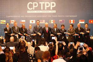 Nhật kỳ vọng CPTPP sẽ có hiệu lực vào năm tới