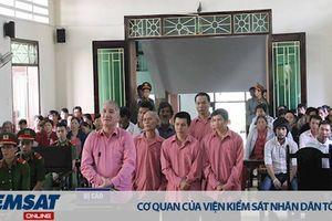 Bình Định: 81 năm tù cho 09 bị cáo hủy hoại hơn 61ha rừng