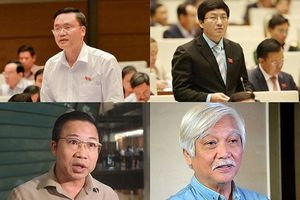 Đại biểu Quốc hội: Thực hiện quyền giám sát thông qua lá phiếu