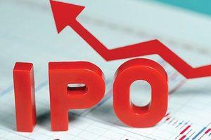 20 doanh nghiệp lớn bán cổ phần lần đầu, thu về 20.300 tỷ đồng