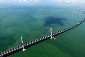 Trung Quốc thông xe cầu vượt biển dài nhất thế giới, trị giá 20 tỷ USD