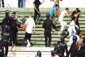 Algeria: Cổ động viên tấn công cầu thủ, hơn 80 người bị thương