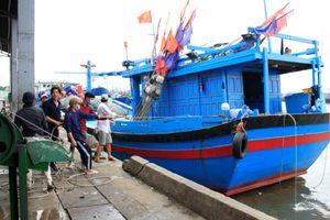 Bà Rịa – Vũng Tàu: Hàng loạt tàu cá nằm bờ do giá dầu tăng cao
