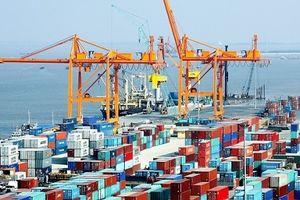 Hợp tác khu vực giúp châu Á đối phó với bất ổn toàn cầu