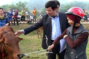 Huyện Quốc Oai: Giảm nghèo hiệu quả nhờ thực hiện đồng bộ các giải pháp