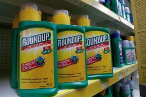 Mỹ giảm tiền bồi thường nạn nhân ung thư của công ty Monsanto
