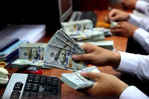 Công an Cần Thơ lý giải vụ 'đổi 100 USD, bị phạt 90 triệu đồng'