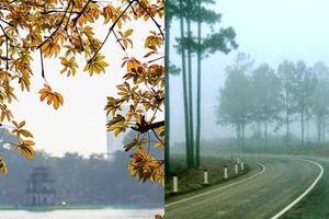 Dự báo thời tiết 24/10: Hà Nội hửng nắng, Đà Lạt 13 độ