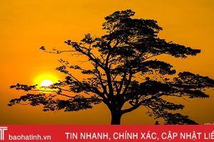 Ngắm mặt trời hoàng hôn tuyệt đẹp trên quê hương Hà Tĩnh