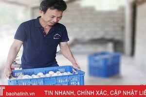 Người đầu tiên ở Hà Tĩnh nuôi vịt đẻ 'siêu trứng' trên cát