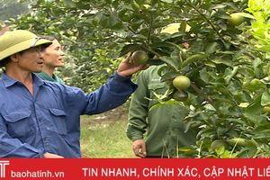 Chuyện 5 cán bộ xã về làm bí thư, thôn trưởng ở Thượng Lộc