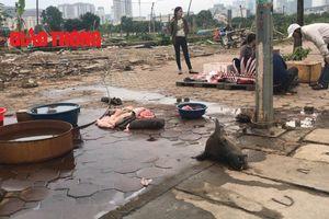 Rùng mình cảnh xẻ thịt trâu, bò bày bán giữa phố Hà Nội