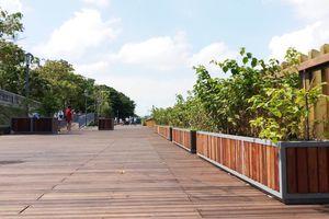 Đường gỗ lim tiền tỷ tại Huế sắp khánh thành trong 'cơn bão' dư luận: Đơn vị thi công nói gì?