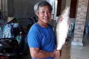 Hà Tĩnh: Ngư dân dùng thuyền thúng đánh bắt được con cá sủ vàng