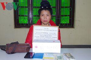 Mua 5.000 viên ma túy từ Lào về Việt Nam bán kiếm lời