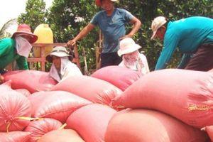 Thanh niên nông thôn rục rịch xuất ngoại lao động