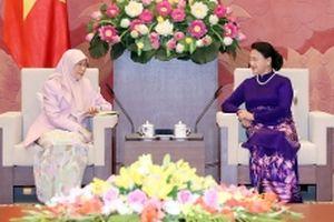 Chủ tịch QH Nguyễn Thị Kim Ngân tiếp Phó Thủ tướng Malaysia