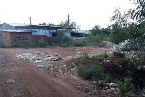 Bị đình chỉ nhưng nhà máy xử lý rác vẫn hoạt động gây mùi hôi thối