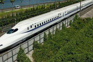 Mời chuyên gia, nhà khoa học phản biện dự án đường sắt cao tốc Bắc – Nam