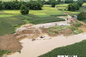 Quảng Nam: Mất 2 máy tính chứa dữ liệu 20.000 chứng nhận sử dụng đất