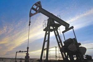Giá dầu thế giới ngày 24/10 biến động trái chiều
