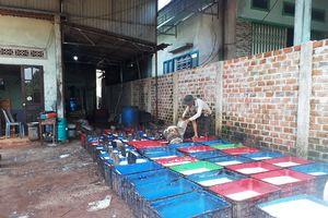 Gia Lai: Dân than phiền vì mùi hôi từ các cơ sở chế biến mủ cao su