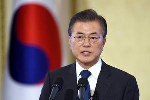 Tổng thống Hàn Quốc: Say rượu khi lái xe có thể xem là hành vi sát nhân