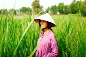 Ngô Thanh Vân hiện thực hóa ước mơ mang phim Việt ra thế giới