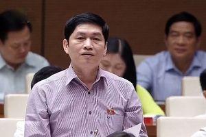 Đã có 'Hoa hậu bò sữa', sao chưa tổ chức thi gạo ngon nhất Việt Nam?