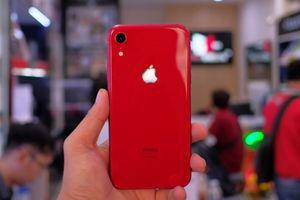 iPhone XR về Việt Nam, giá từ 23,9 triệu đồng