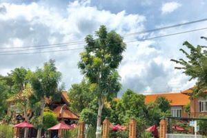 Quán cà phê trên đất công viên ở Quảng Ngãi: Cho thuê giá 'siêu rẻ'?