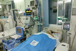 Kỹ thuật 'gấu ngủ đông' cứu Việt kiều Mỹ 3 lần ngưng thở