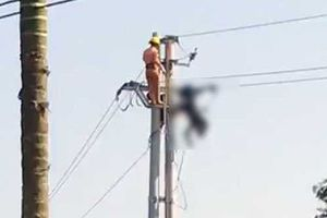 Dựng cột điện, 4 người bị điện giật tử vong