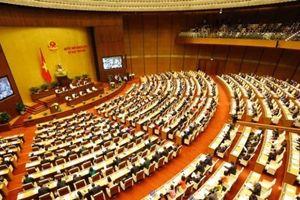 Đại biểu Quốc hội: 'Cảm nhận về một Chính phủ gần dân, trọng dân đang lan tỏa rất lớn'