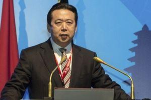 Chủ tịch Interpol Mạnh Hồng Vĩ sa lưới