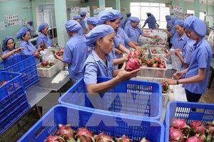 Doanh nghiệp nội kỳ vọng mở rộng thị trường xuất khẩu với CPTPP