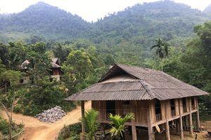 Thanh Hóa: Hỗ trợ 3.000 tấn gạo cho đồng bào dân tộc thiểu số trồng rừng