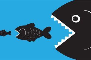 Loại bỏ tư duy 'cá lớn nuốt cá bé' trong thời kì kinh tế số
