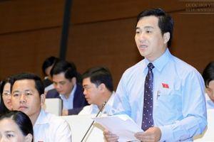 Đại biểu đề nghị sớm đầu tư kết nối các cụm cảng với tuyến cao tốc để tăng hiệu quả khai thác