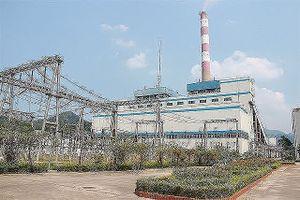 Than - Khoáng sản Việt Nam (TKV) dự báo nhu cầu than cho các hộ sản xuất lớn sẽ tăng