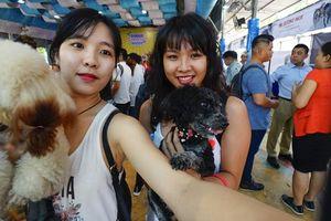 Độc đáo Lễ hội cún cưng Sài Gòn