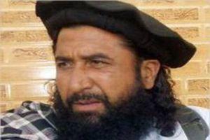 Hé lộ nguyên nhân Pakistan trả tự do cho thủ lĩnh Taliban