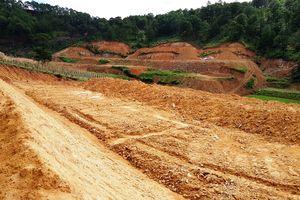 Ngang nhiên san ủi hàng chục ngàn mét vuông đất lâm nghiệp